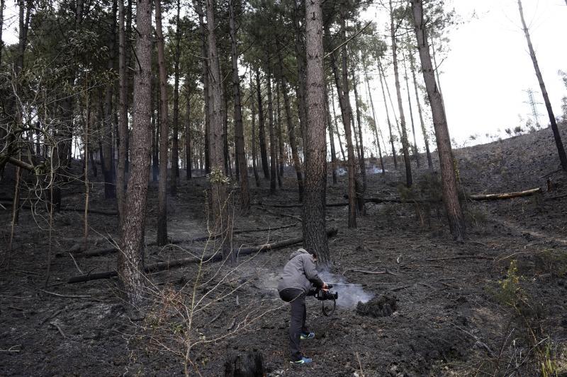 Así amaneció Muskiz el lunes tras los incendios