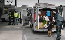 Guardia Civil y Policía Nacional desmantelan en un año 26 bandas que traficaban con personas o drogas