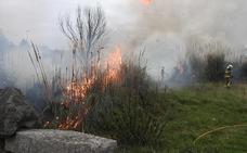 Un coche y un camión, afectados por un fuego en matorrales en Lamiako