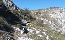 Ruta Montemayor (1.104 m.), Azkorri (1.094 m.), Cotorrillo (1.084 m.) y Santa Cruz (965 m.)