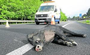 Mejoran el vallado del corredor del Cadagua para poner freno al atropello de animales