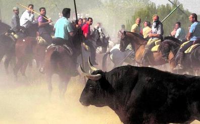 Prohibido matar animales en nombre de la tradición