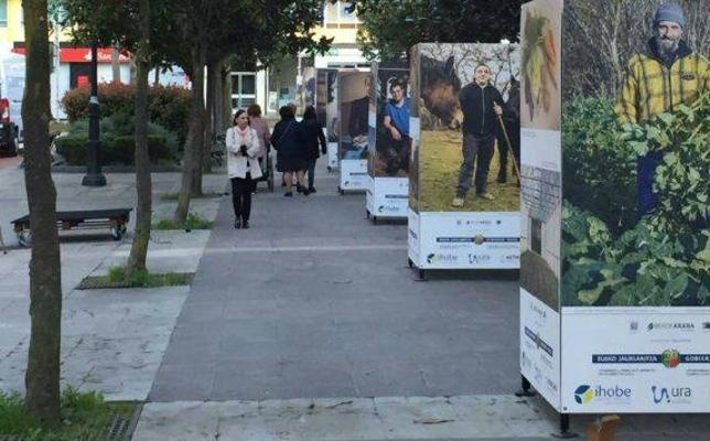 La exposición Berdearaba se quedará en el Guk de Amurrio hasta el 31 de marzo