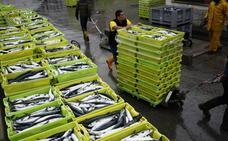 Las 2.362 toneladas de cuota adicional de verdel son «migajas» para los arrantzales