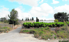 Localizado en Francia el cuarto menor implicado en la violación grupal de Alicante
