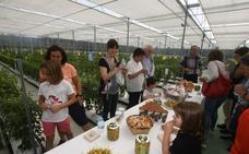 Festival gastronómico Uribe Gastrofest: Lo mejor del campo para toda la familia