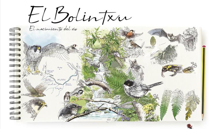 Flora y fauna del Bolintxu