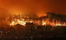 Un devastador incendio forestal arrasa más de 380 hectáreas en Corea del Sur