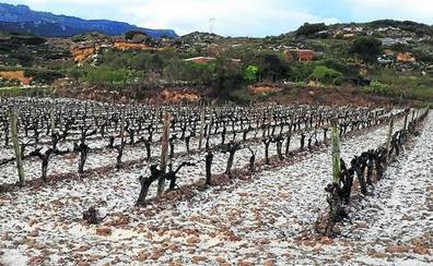 Una granizada en Labastida pone en guardia a los viticultores de Rioja Alavesa