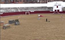 La plaza de toros de Estella, espacio de esparcimiento canino