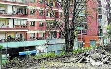 Sagarrak critica la tala de un árbol de «más de cuarenta años» por las obras de Pozokoetxe