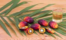 El veneno del aceite de palma