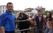 La ganadería ya tiene relevo en Llodio