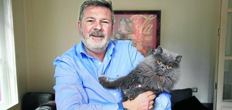 «¿Quién quiere una mascota electrónica habiendo gatos?»