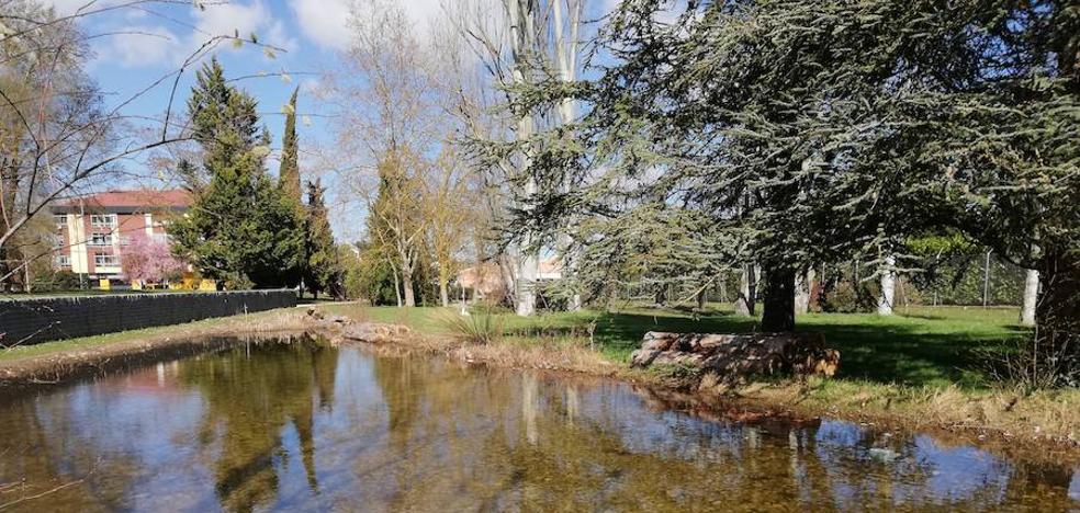 Vitoria busca fomentar la biodiversidad en sus parques urbanos