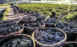 ABRA se queda sola al perder el nombre de Rioja Alavesa