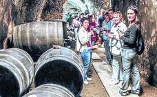 Rioja Alavesa aumenta su tirón turístico y ya es la quinta comarca vinícola más visitada