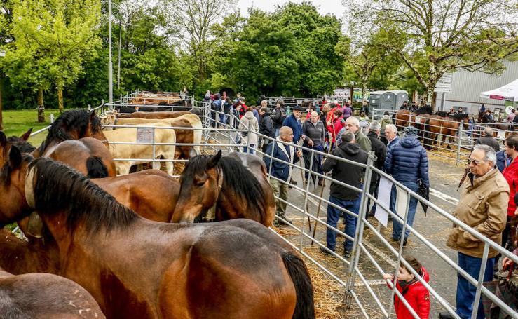 170 cabezas de ganado en la feria del Gorbeia