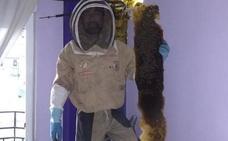 Rescatan una enorme colmena de más de 80.000 abejas oculta en un dormitorio de Granada
