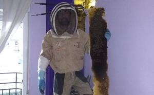 Retiran una enorme colmena de más de 80.000 abejas oculta en un dormitorio de Granada