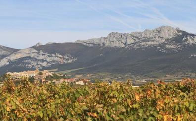 Nuevo intento para que el paisaje del vino de Rioja sea patrimonio de la Unesco