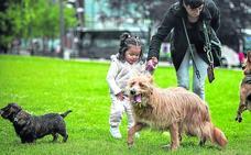 Ya hay más perros que niños en Bilbao