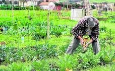 Bizkaia rastrea parcelas que no se declaran para impulsar la actividad agrícola