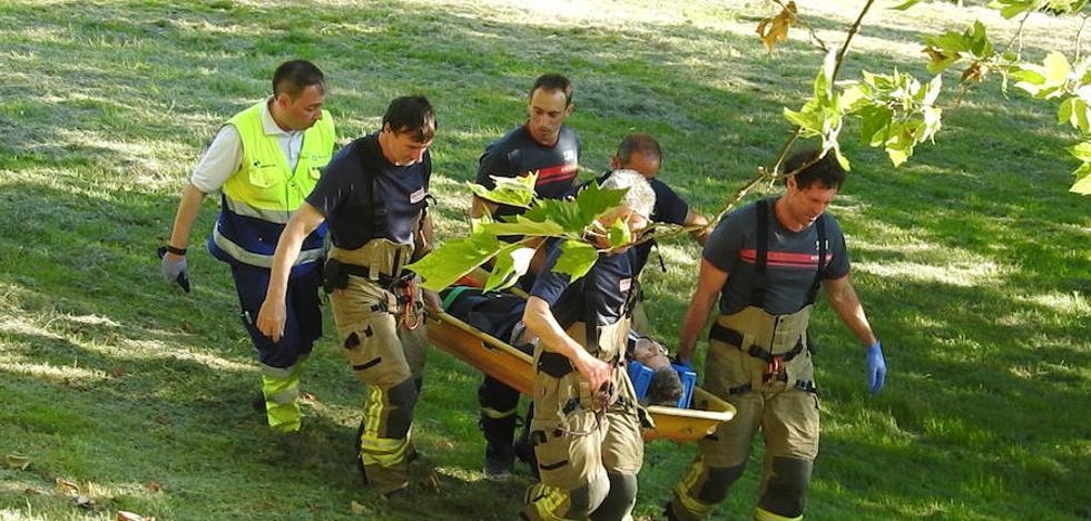 Herido grave un hombre al caer de un árbol al que se había subido para coger cerezas en Sestao