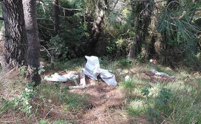 El Plan de Empleo Local de Barakaldo ayuda a eliminar once vertederos incontrolados