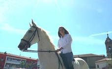 Un caballo se pasea por la almendra medieval de Vitoria
