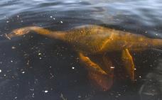 A la caza del monstruo del lago Ness