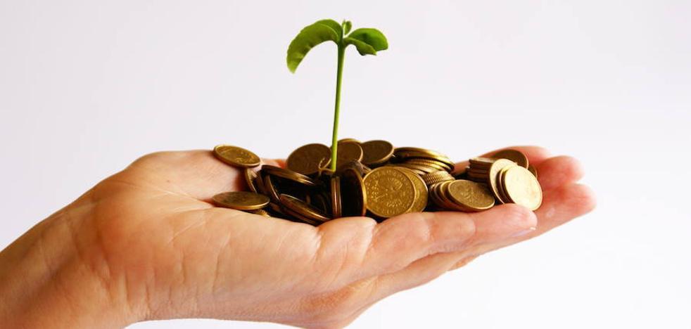 Economía verde: cooperación y fiscalidad