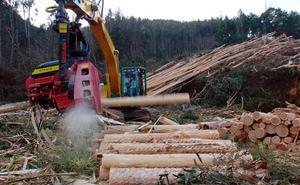 Busturialdea recibe 288.000 euros para fomentar la contratación