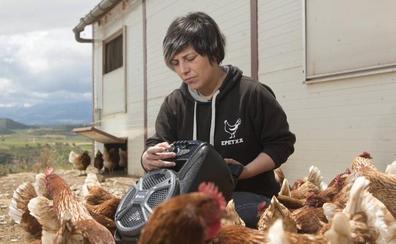 Epetxa, la granja de las gallinas felices