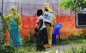 La mitad de los brotes de ébola no es detectada y afecta a grupos de menos de cinco personas