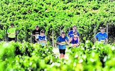 La falta de inscripciones obliga a suspender la media de Rioja Alavesa