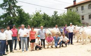 Una ganadería de Orduña se lleva 11 premios en la Feria del Ganado Charolés de Euskadi