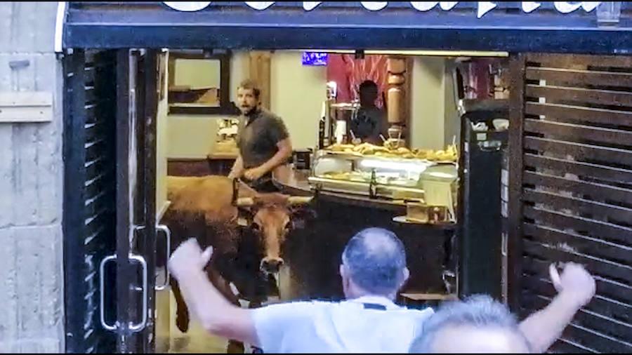 Una vaquilla se cuela en un bar de Laguardia durante un encierro
