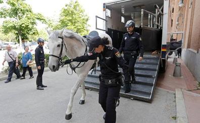 Policías a caballo se incorporan por primera vez al dispositivo de seguridad de los sanfermines