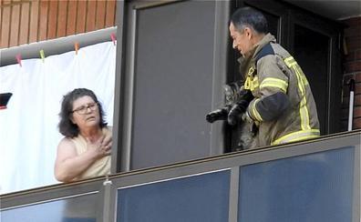 Así fue el rescate de un gato por los Bomberos tras colarse en el balcón de un vecino en Leioa