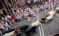 Toros de los encierros de San Fermín 2019 en Pamplona: programa por días