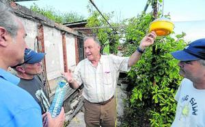 Vecinos de Getxo capturan 150 reinas de avispa asiática