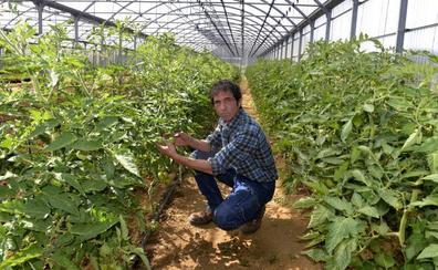 Jon Ander Zalduegi: «Los mejores suelos se dedican a la vivienda»