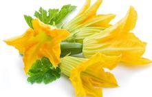 Flor de calabacín, un regalo de la huerta