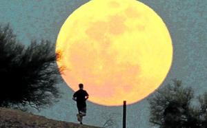 Hechizados por la Luna