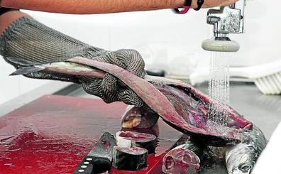 Bilbao recogerá 374 toneladas al año de restos a las pescaderías para reciclarlos