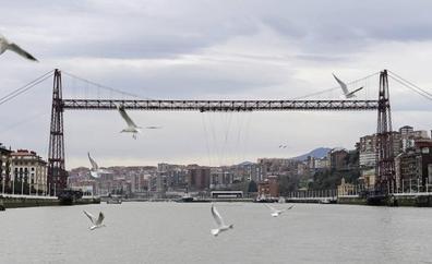 Portugalete estudia el uso de drones para retirar nidos de gaviotas