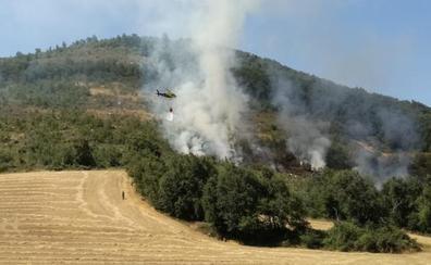 Sofocan un incendio forestal en Treviño