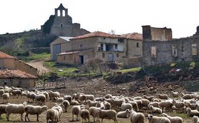 Una comarca despoblada en Las Merindades