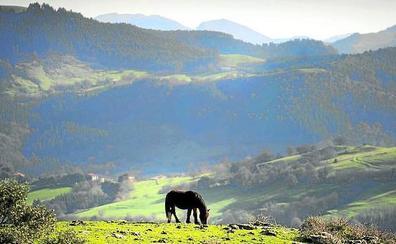 Los escolares convierten Armañón en el parque natural más visitado de Bizkaia
